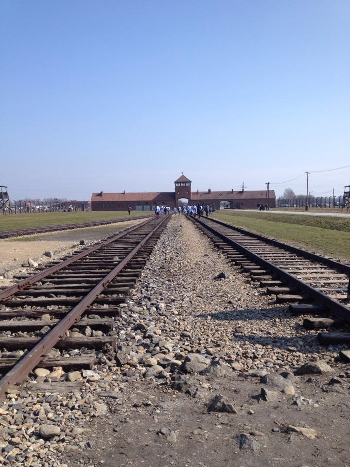 Book Review  The Tattooist of Auschwitz – Heather Morris  & My Experience of Visiting the Auschwitz Camps.