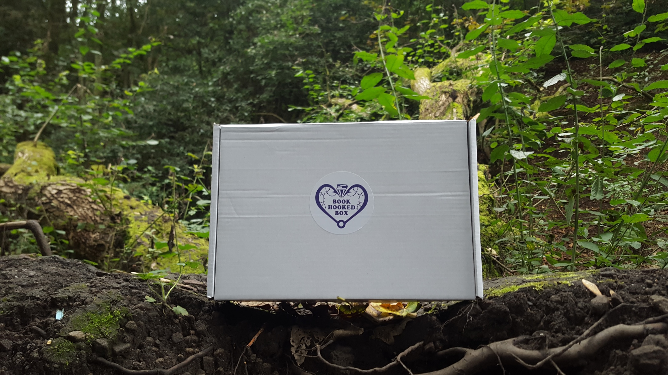 Blogtober Day 3 | Booked Hooked Box | A New and Exciting YA Book Subscription Box