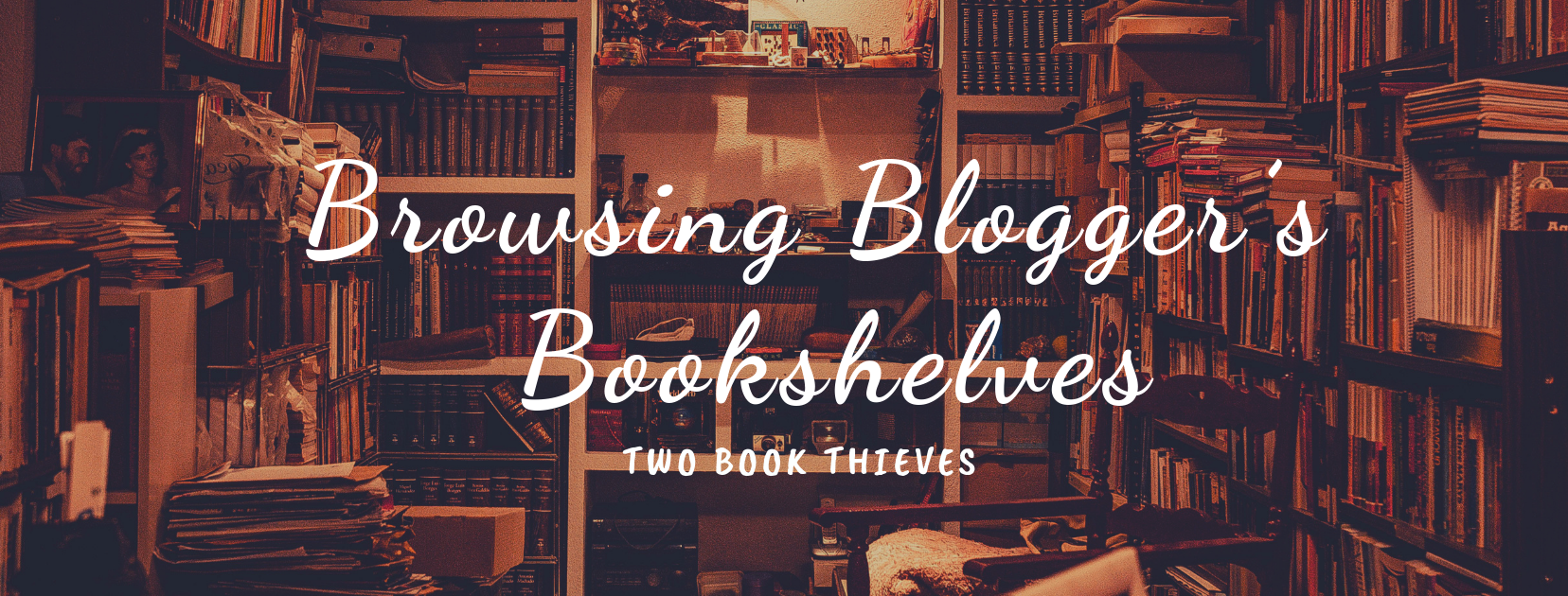 Browsing Blogger's Bookshelves | Two Book Thieves